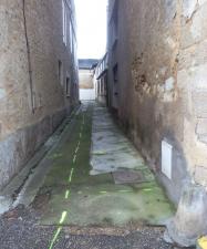 rue-perdue